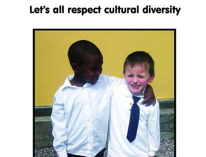 Social Inclusion Community Activation Programme (SICAP)